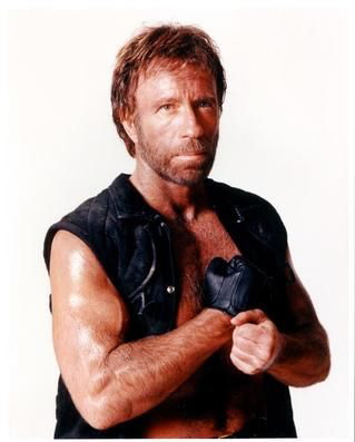 Chuck Norris 2 - Chuck Norris clogs the toilet…even when he pisses.